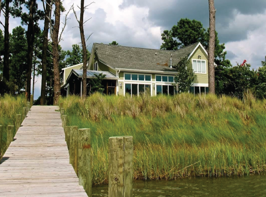 Living Shorelines for Property Owners